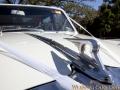 classic_wedding_cars_sydney-15