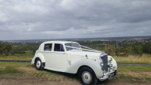 """Rose"", Bentley MK6 4 seater"